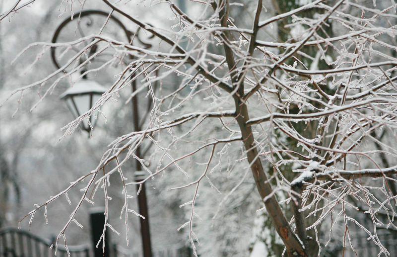 Синоптики пообещали позднюю зиму
