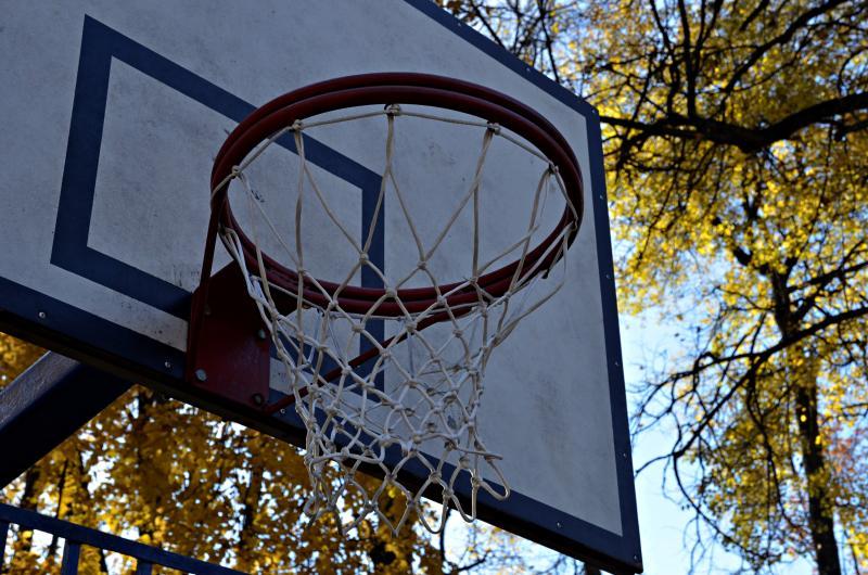 Зона для игры в футбол, воллейбол и баскетбол появилась в Шишкином лесу