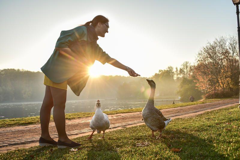 Забота о пернатых: общегородскую карту кормовых зон разработают для столичных птиц