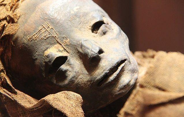 В московской квартире нашли мумию мужчины, ведется проверка
