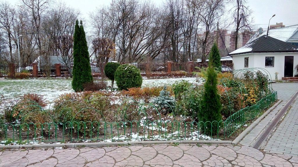 Растения на территории Тихвинского храма в Троицке защитят от морозов. Фото предоставил настоятель Троицкого Тихвинского храма