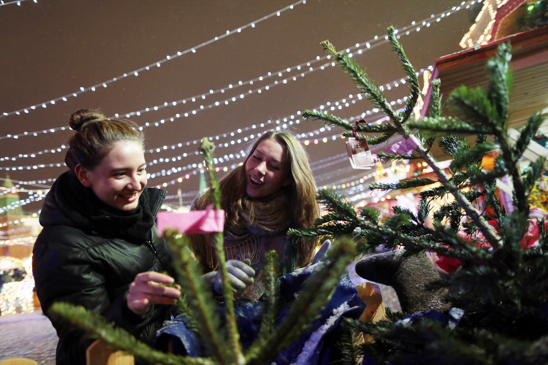Торговля на площадках идет до Нового года. Фото: Анна Иванцова