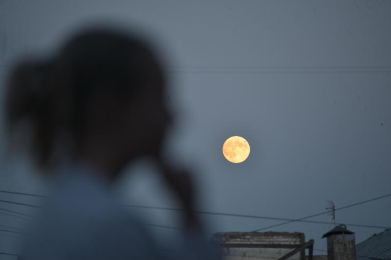 В Москве отменили последний звездопад года из-за луны