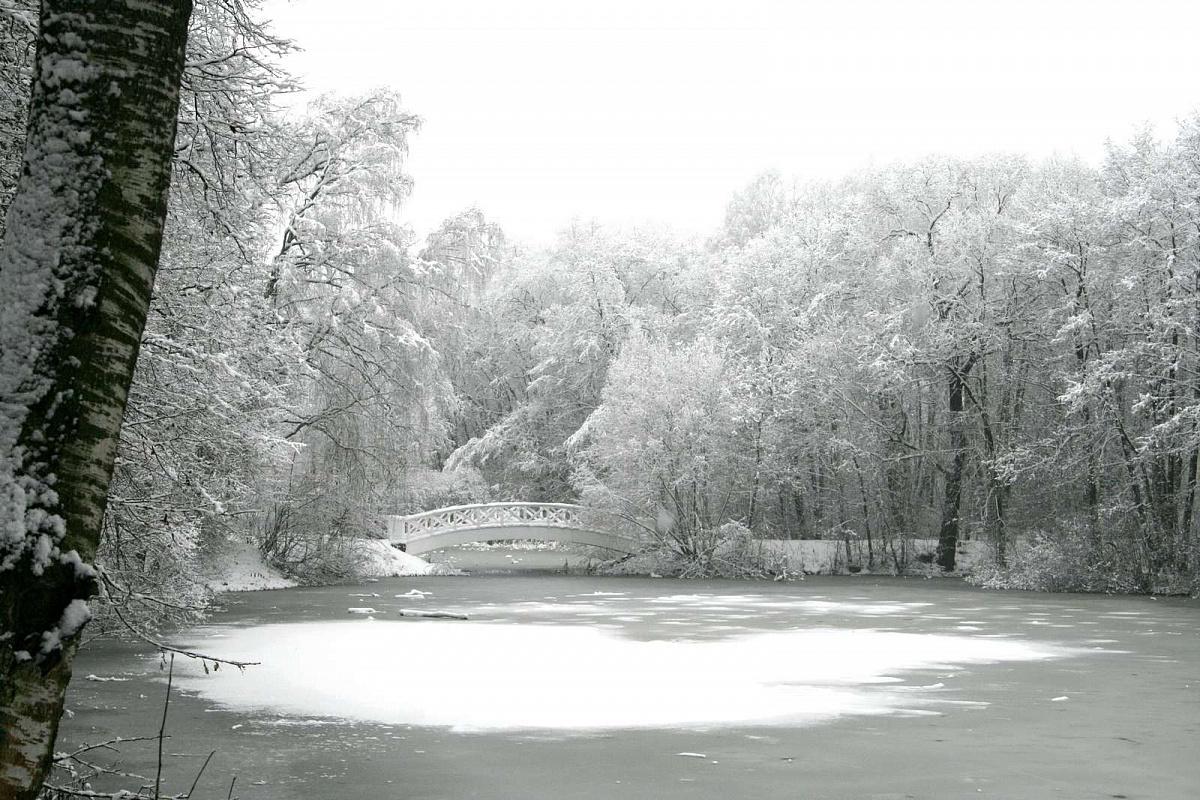 Парк музея-усадьбы. Фото: официальный сайт музея-усадьбы «Остафьево»