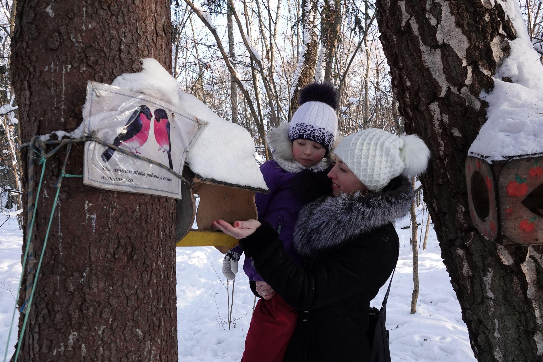 Стоп-кадр: Снегири, вам привет от попугая!