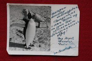 Новогоднюю открытку для членов экспедиции на станции «Молодежная» юбиляр хранит до сих пор. Фото из личного архива