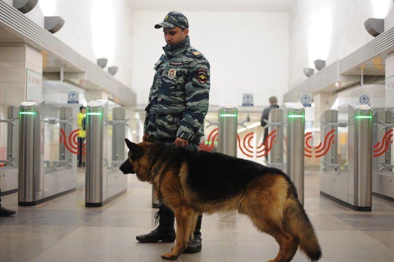 Число преступлений в московском метро сокращено вдвое за 5 лет