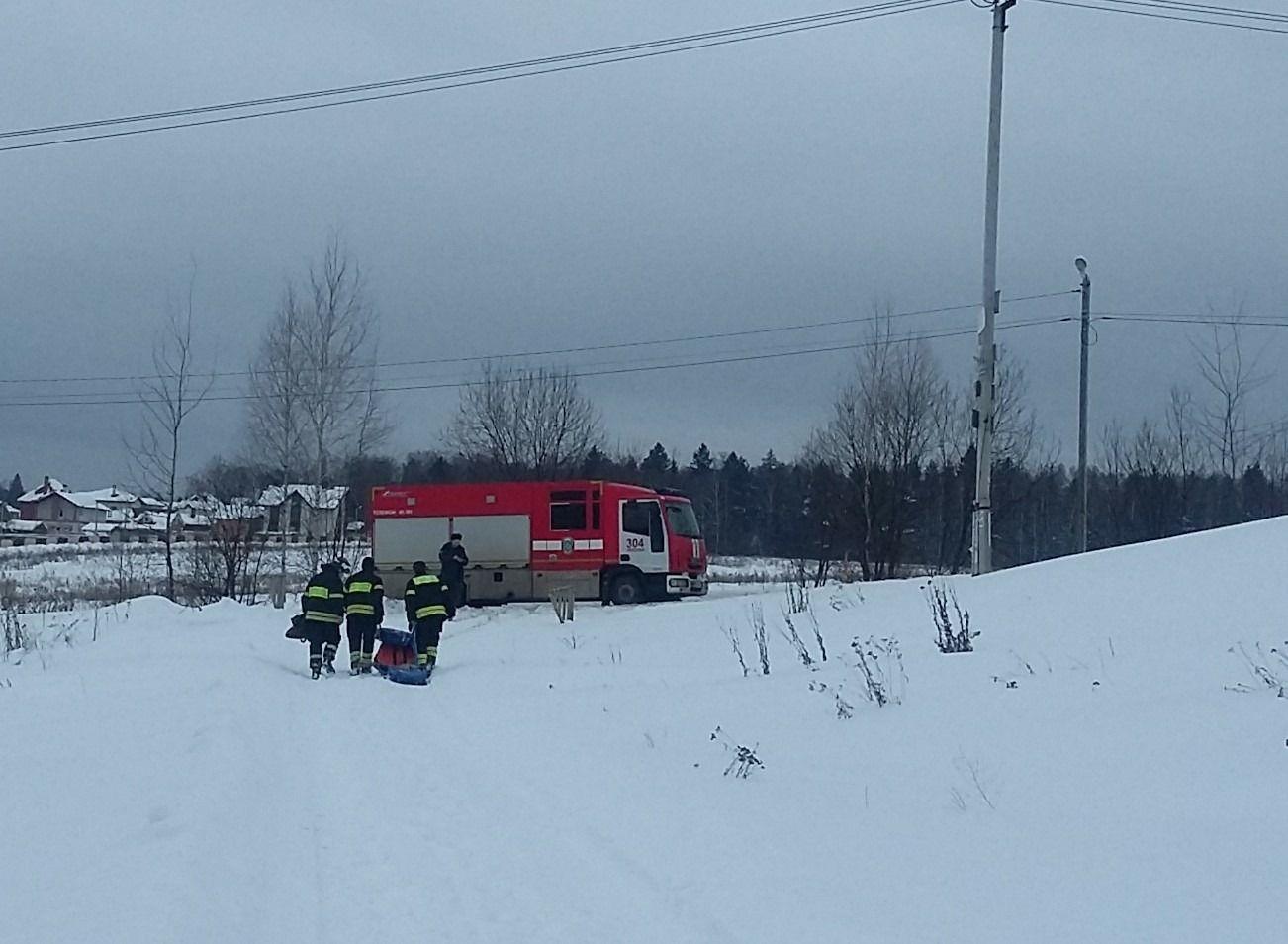 Московские пожарные в ТиНАО спасли двух собак из ледяного плена
