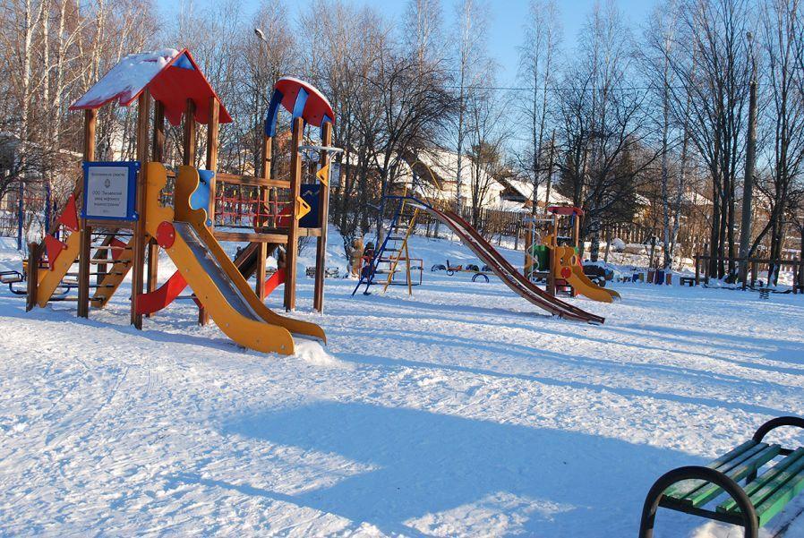 Голосование о детской или спортивной площадке стартовало в поселении Московский