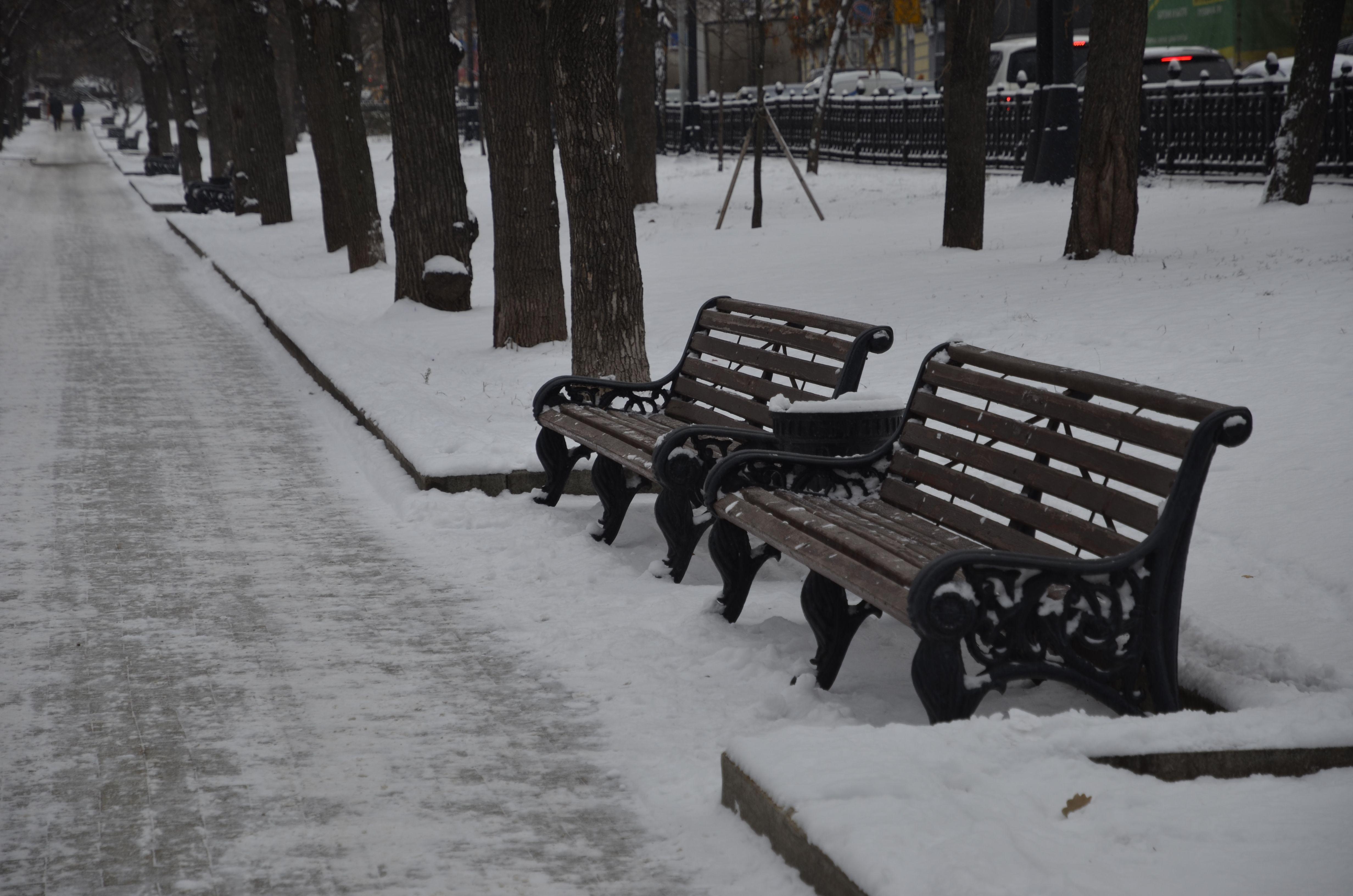 Зоны отдыха благоустроят в Рязановском