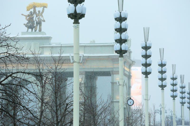 Новый выставочный комплекс построят к концу 2021 года. Фото: Алексей Орлов, «Вечерняя Москва»