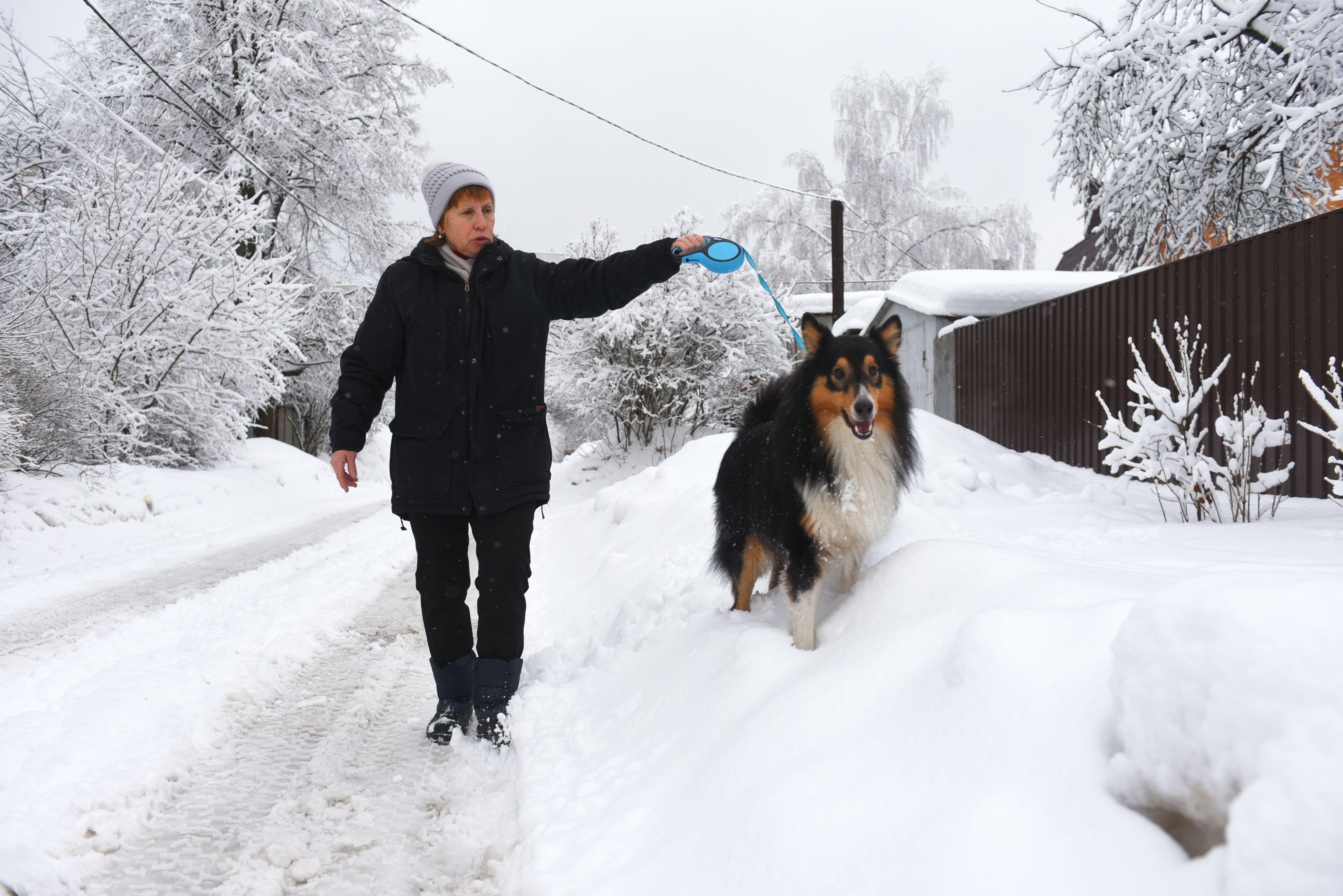 Синоптики пообещали москвичам морозное начало весны