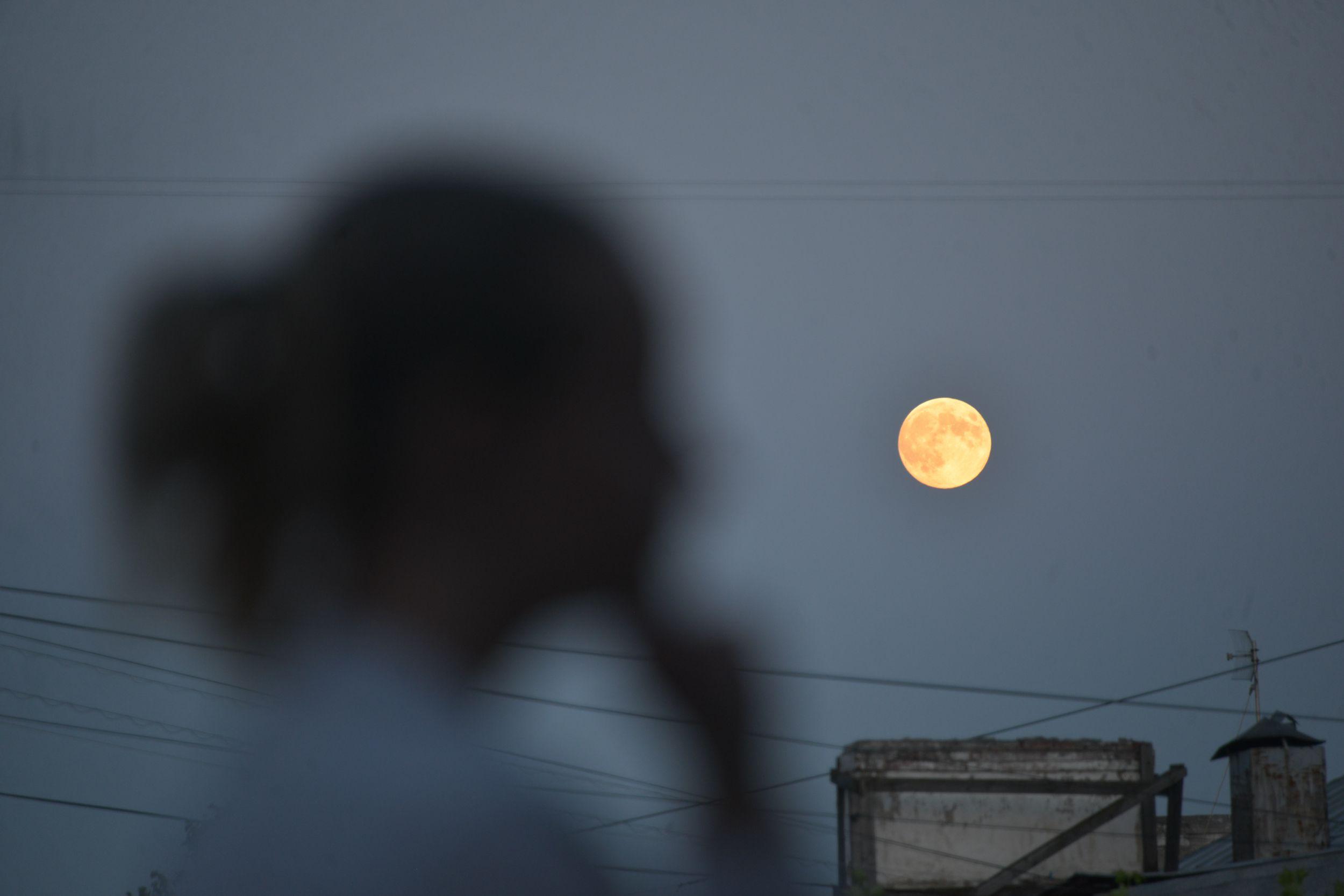 Луна примет участие в весеннем параде. Фото: Наталья Феоктистова