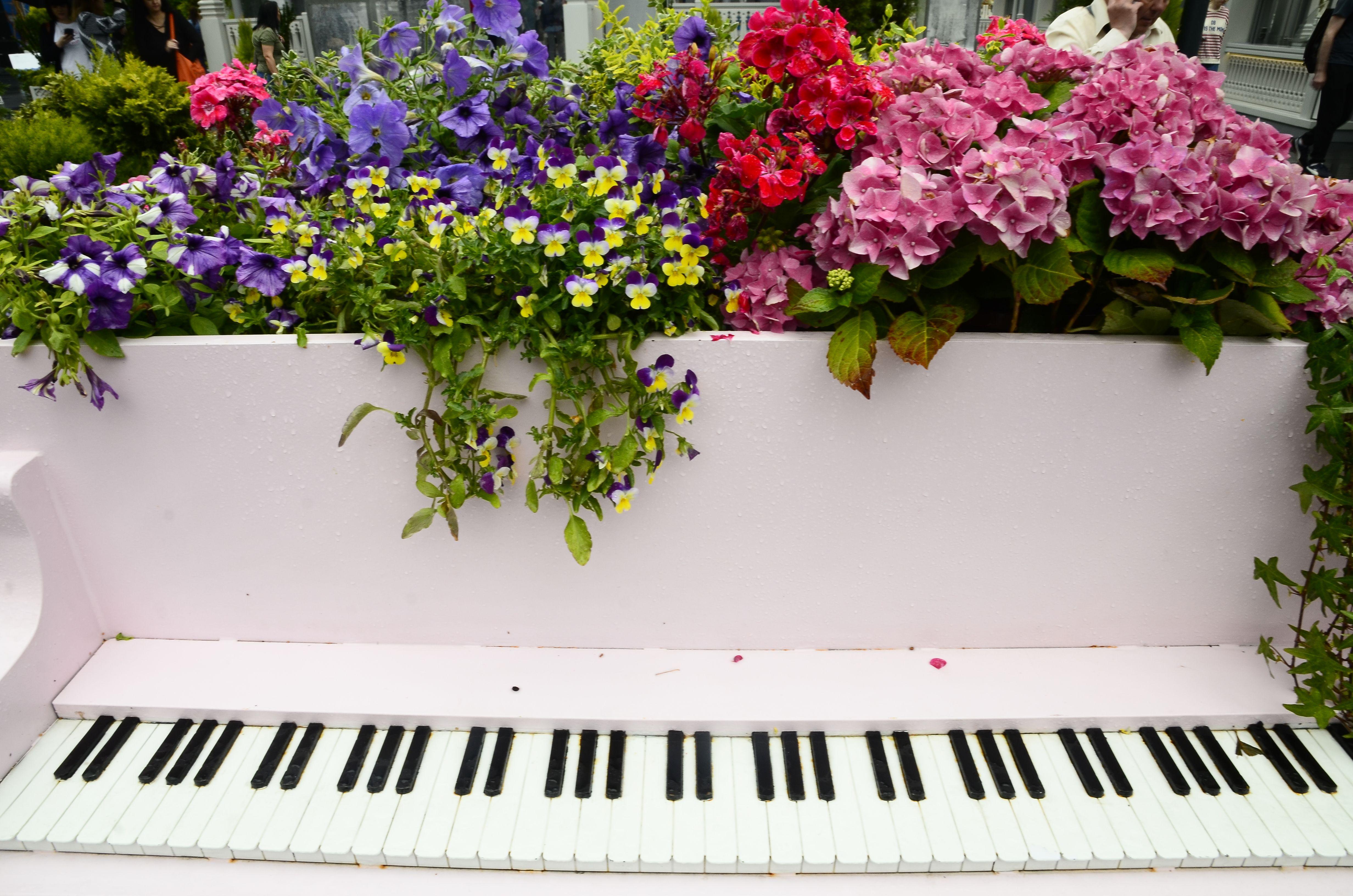 Музыкальный мастер-класс и другие развлечения пройдут в Рязановском. Фото: Анна Быкова