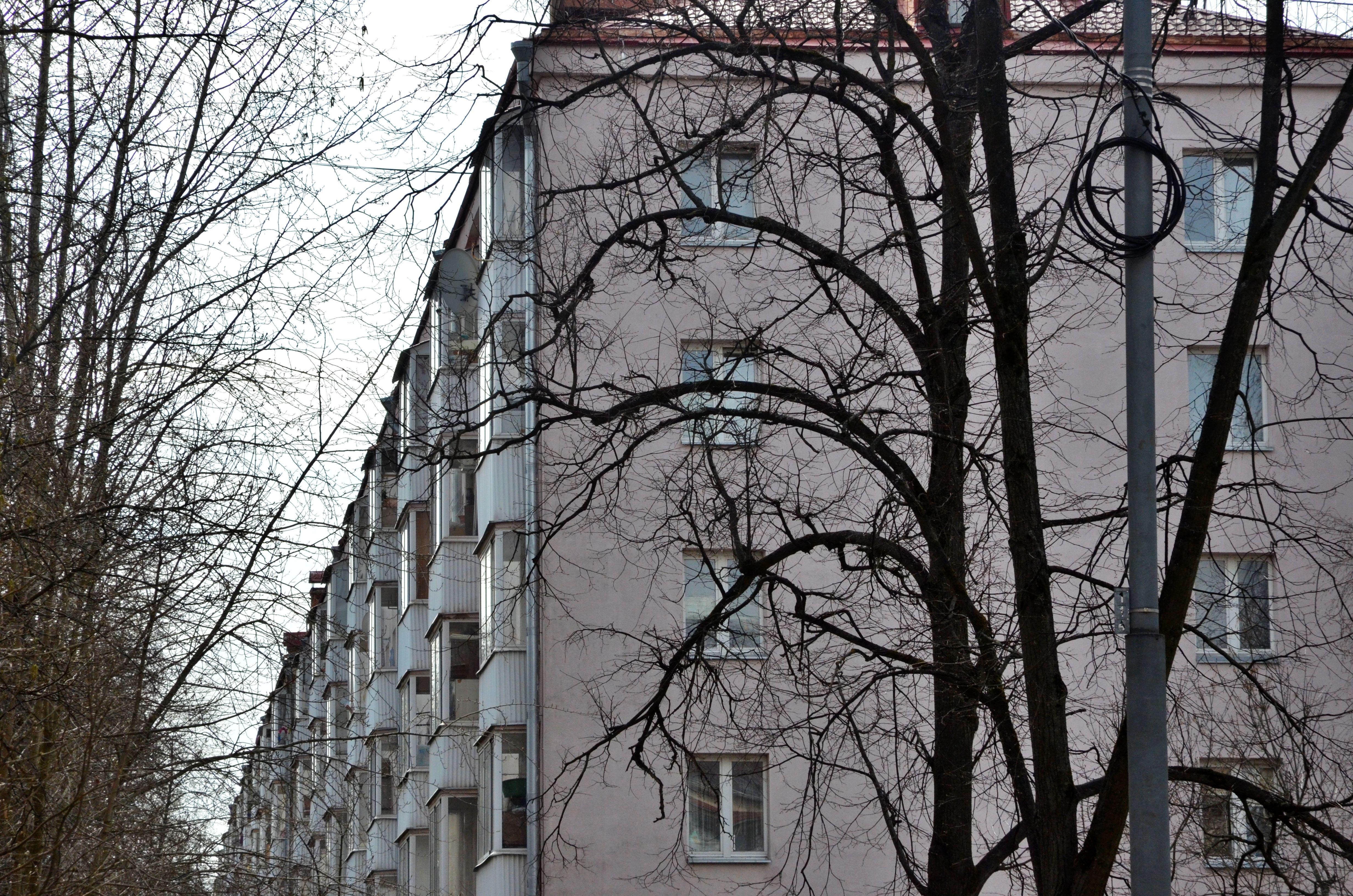 Текущий ремонт подъездов трех жилых домов планируют завершить в Десеновском к августу