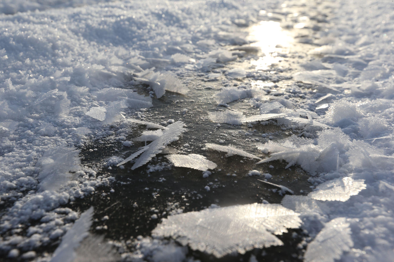 Школьница из Внуковского отправится в полярное путешествие