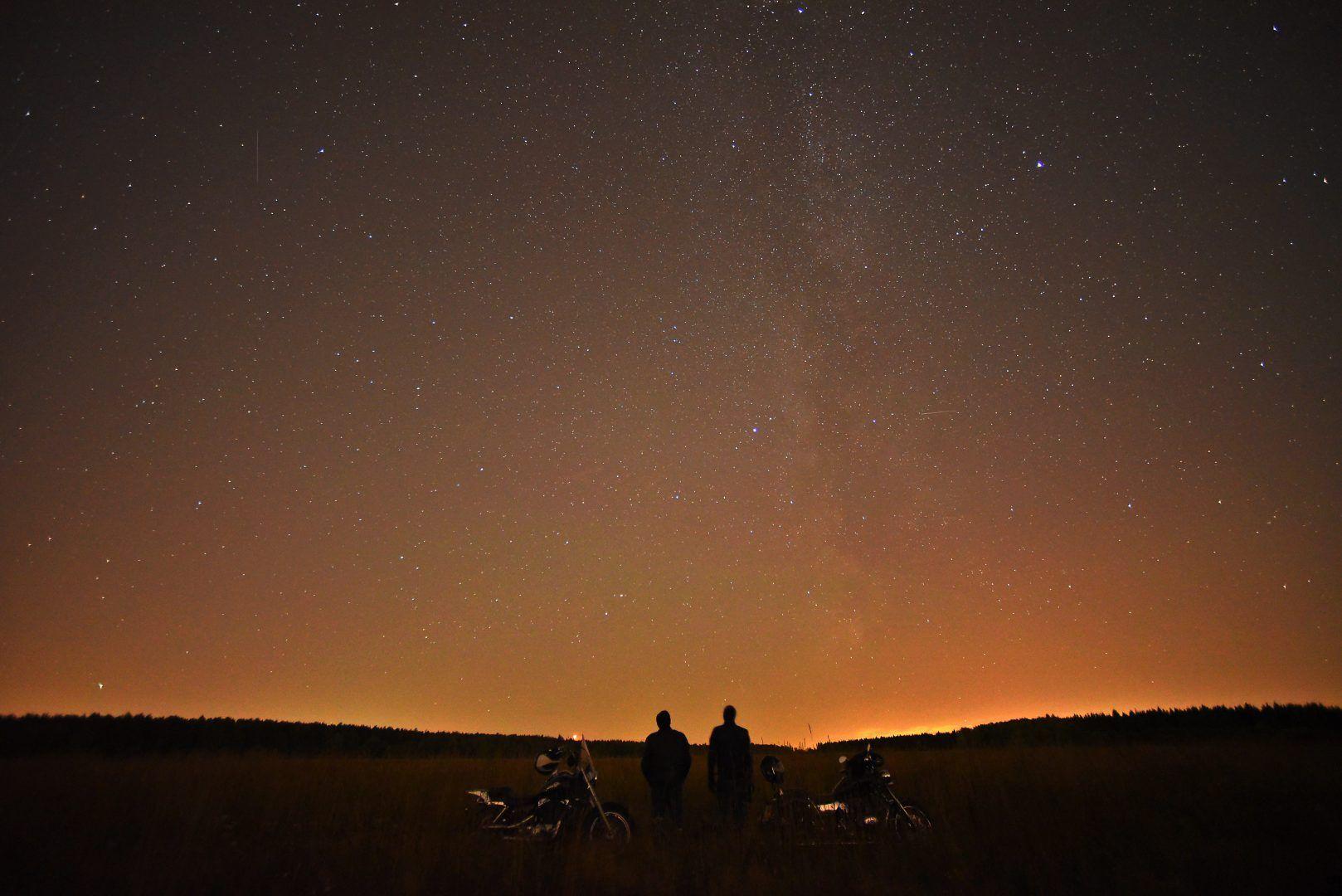 В этом году ожидается до 20 метеоров в час. Фото: Александр Кожохин