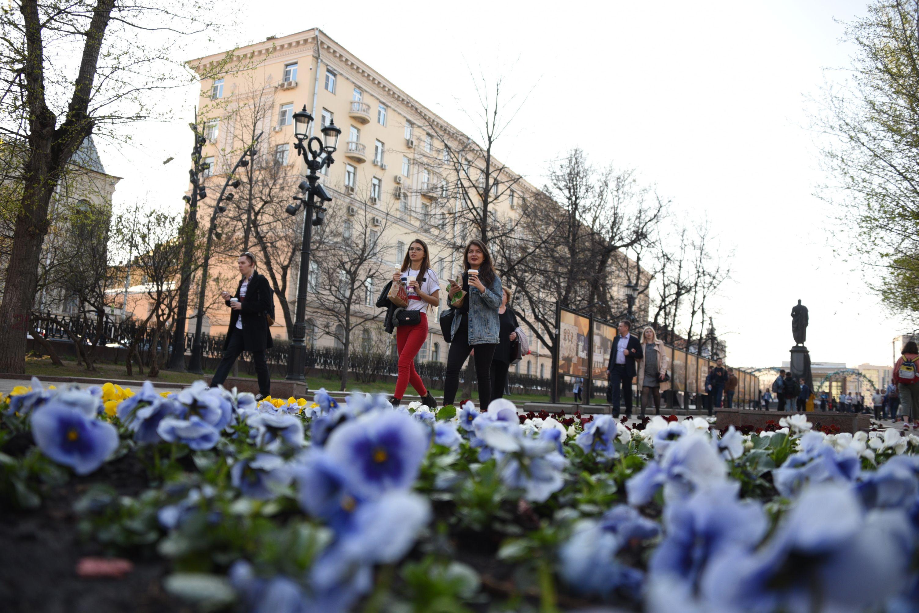 Москвичам пообещали солнечную погоду