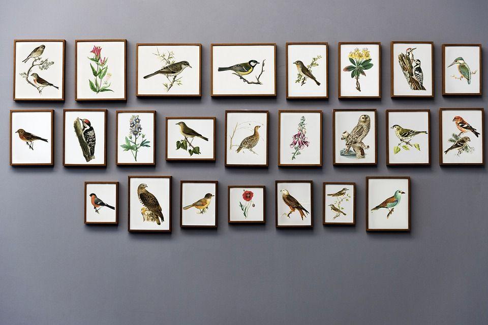 Выставку российского художника подготовят в Троицке. Фото: pixabay.com