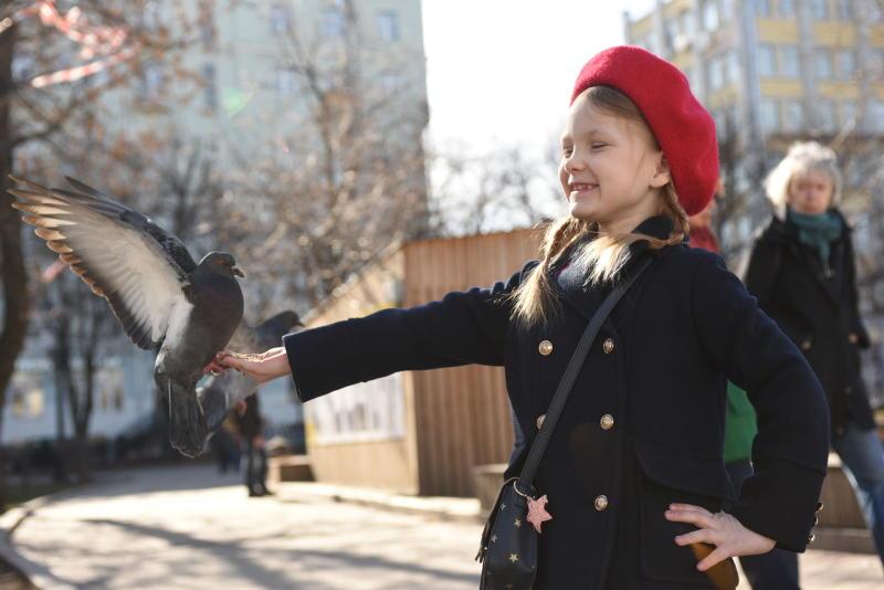 Москвичей ожидает теплая неделя