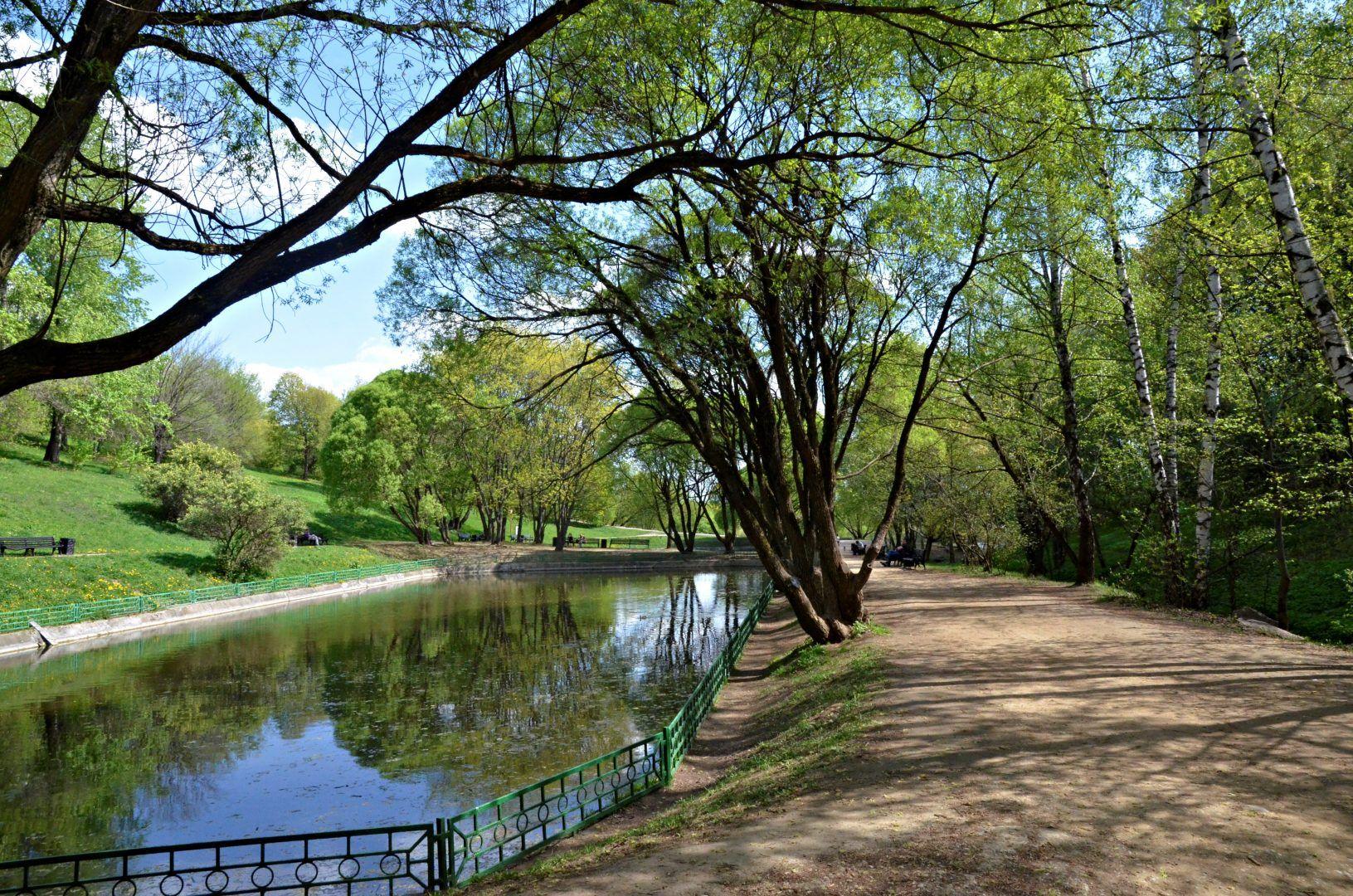 Спортивно-оздоровительный парк создадут в Кленовском. Фото: Анна Быкова