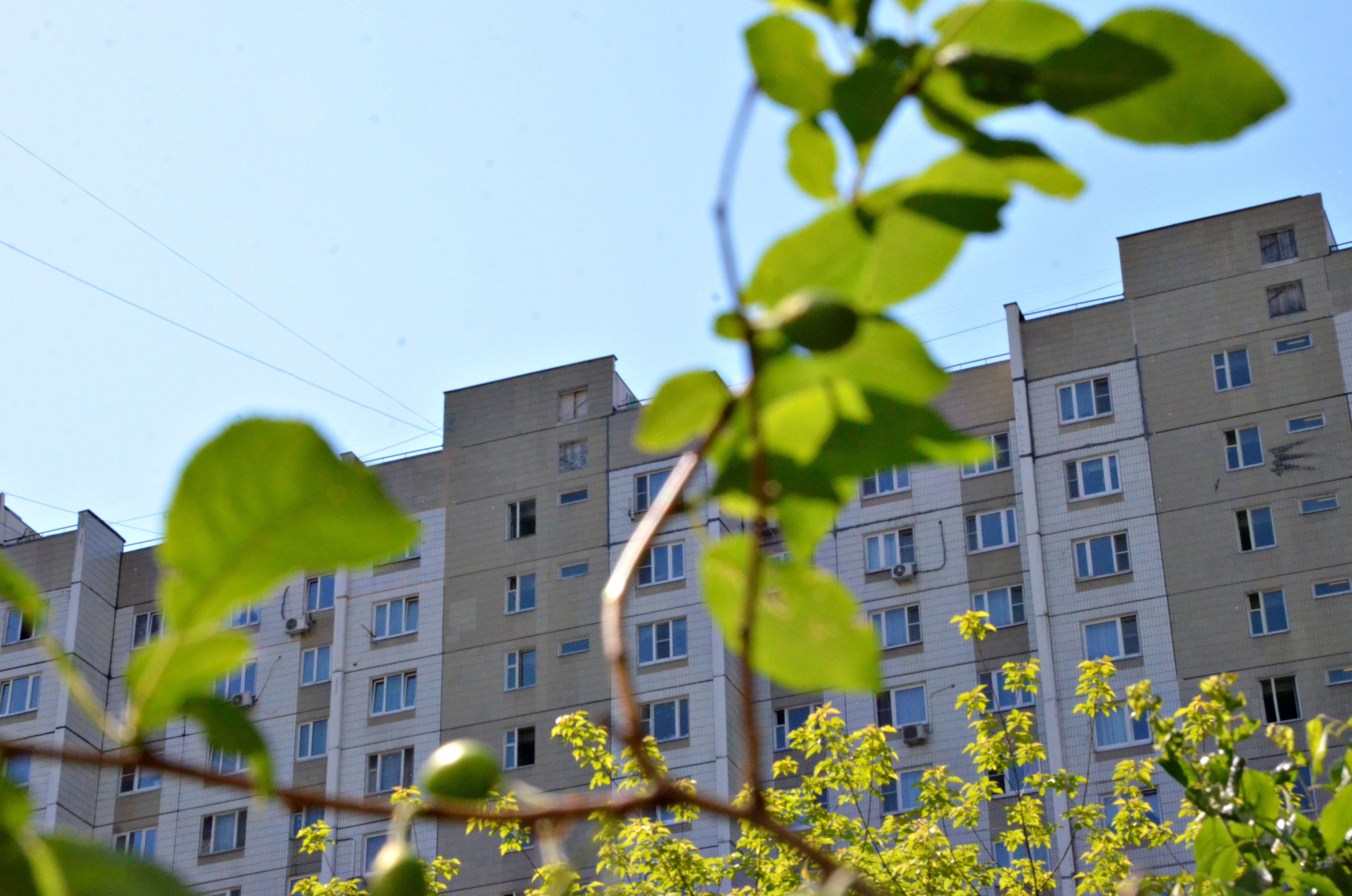 Благоустройство двора завершат в Десеновском