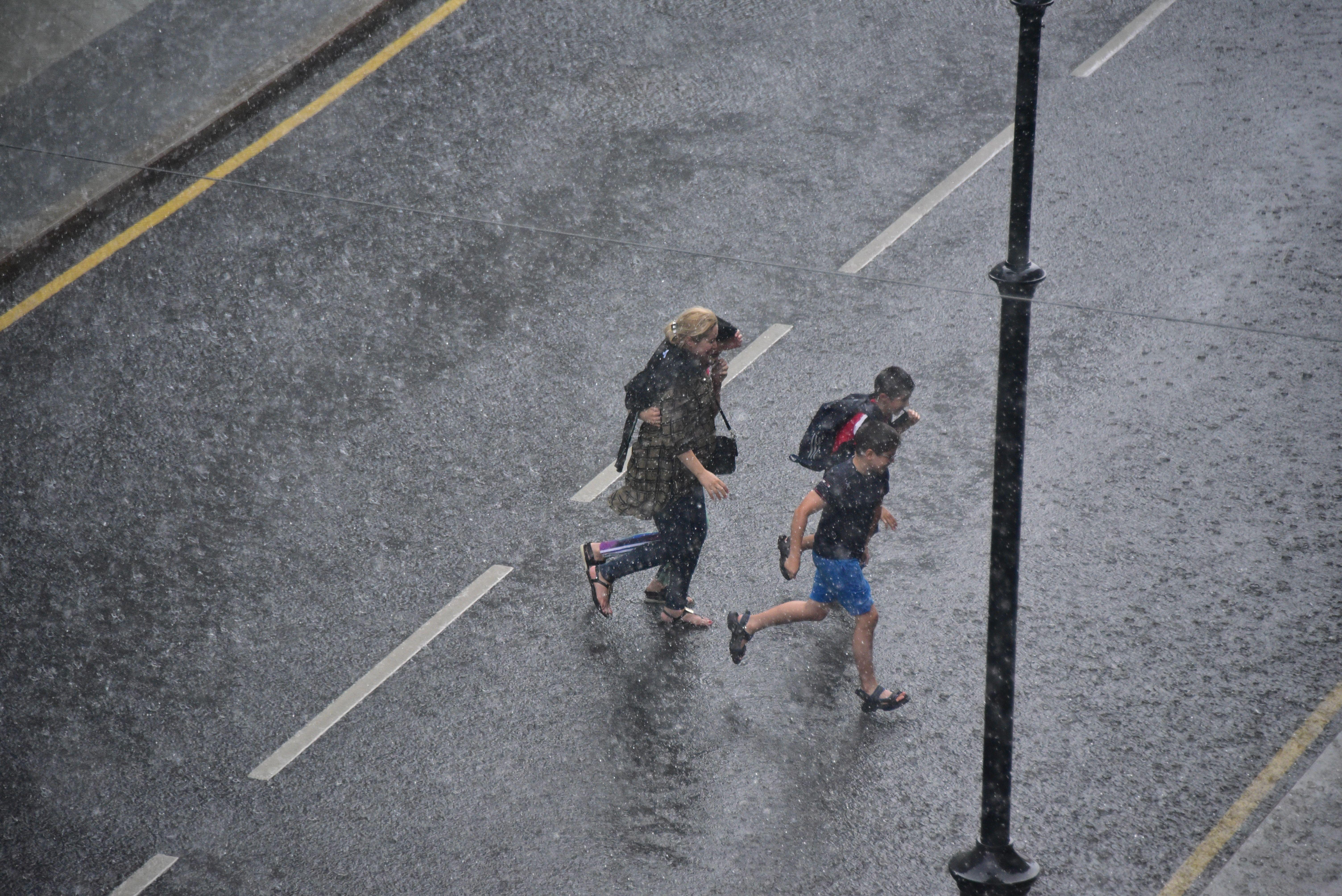 Ветер и гроза спровоцировали «желтый» уровень опасности 23 мая в Москве