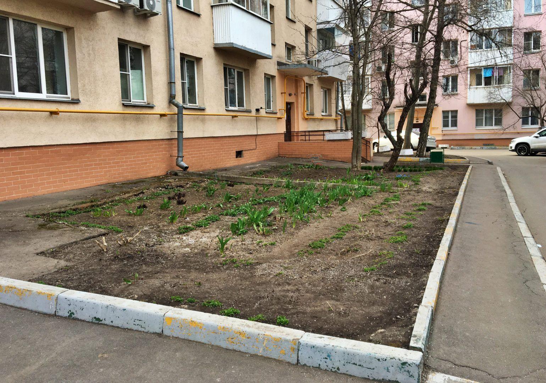 Одна из улиц поселения Сосенское будет благоустроена. Фото: Анна Быкова