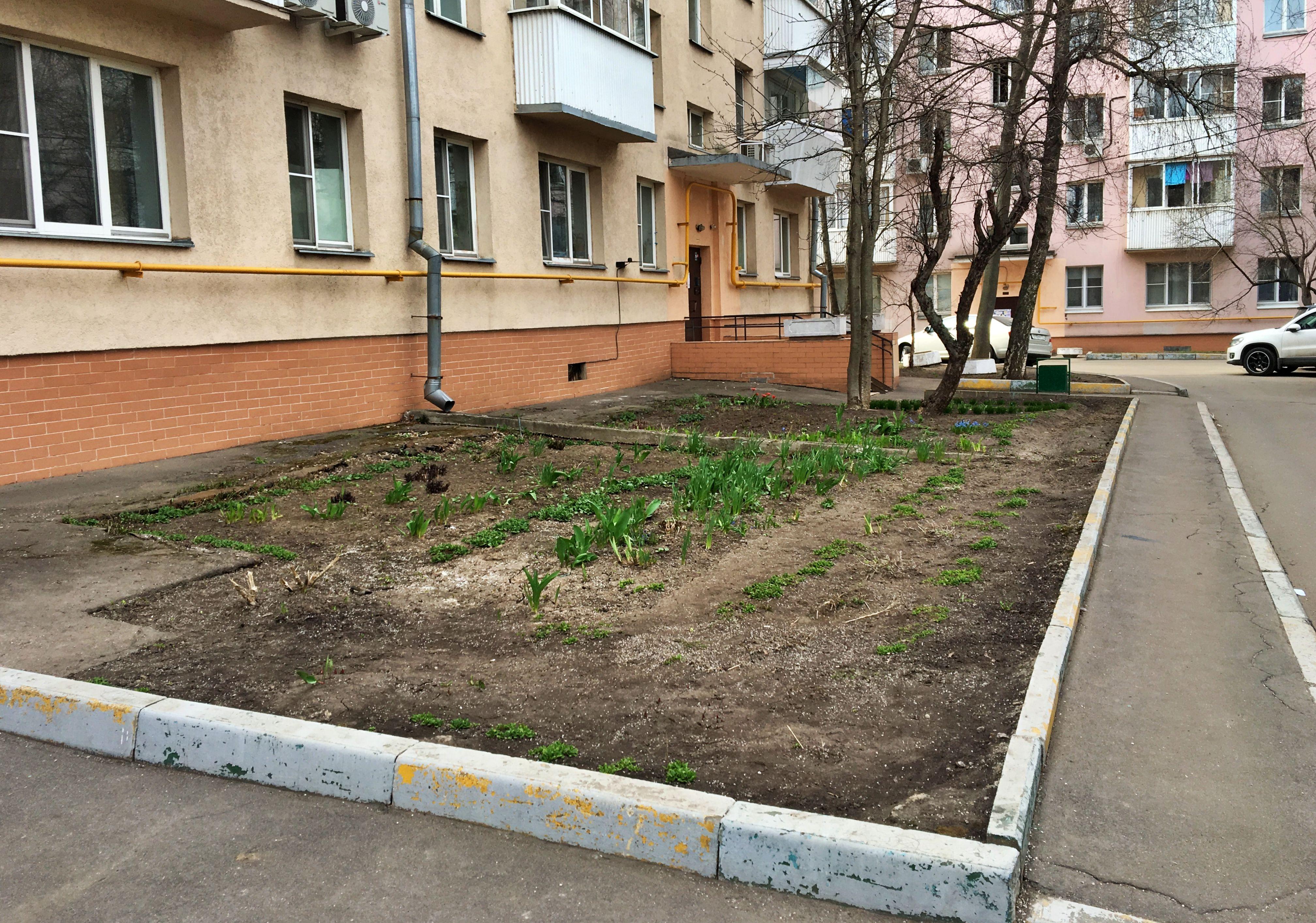 Одну из улиц поселения Сосенское благоустроят. Фото: Анна Быкова