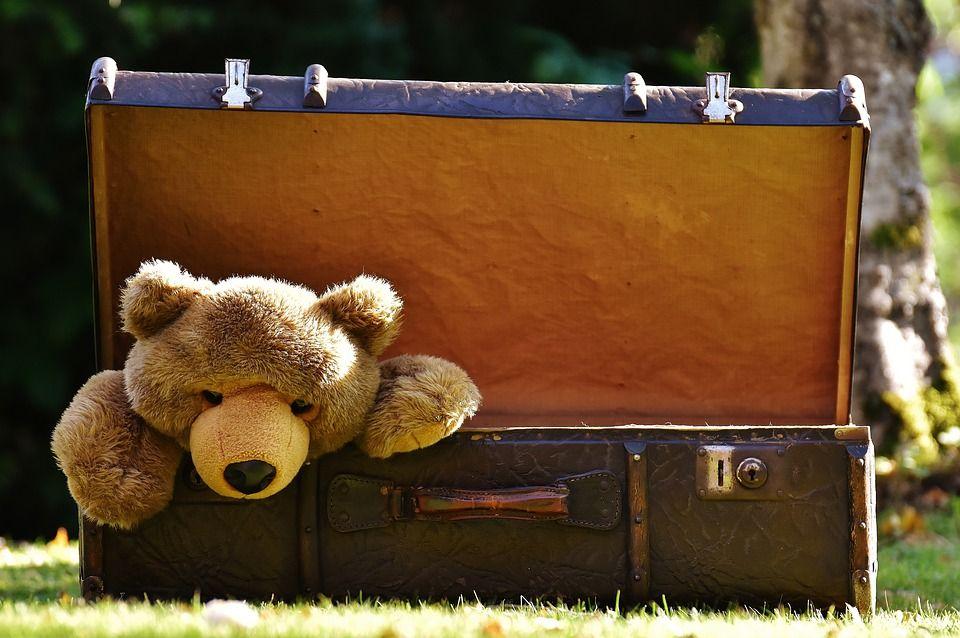 Игрушки можно принести из дома. Фото: pixabay.comм