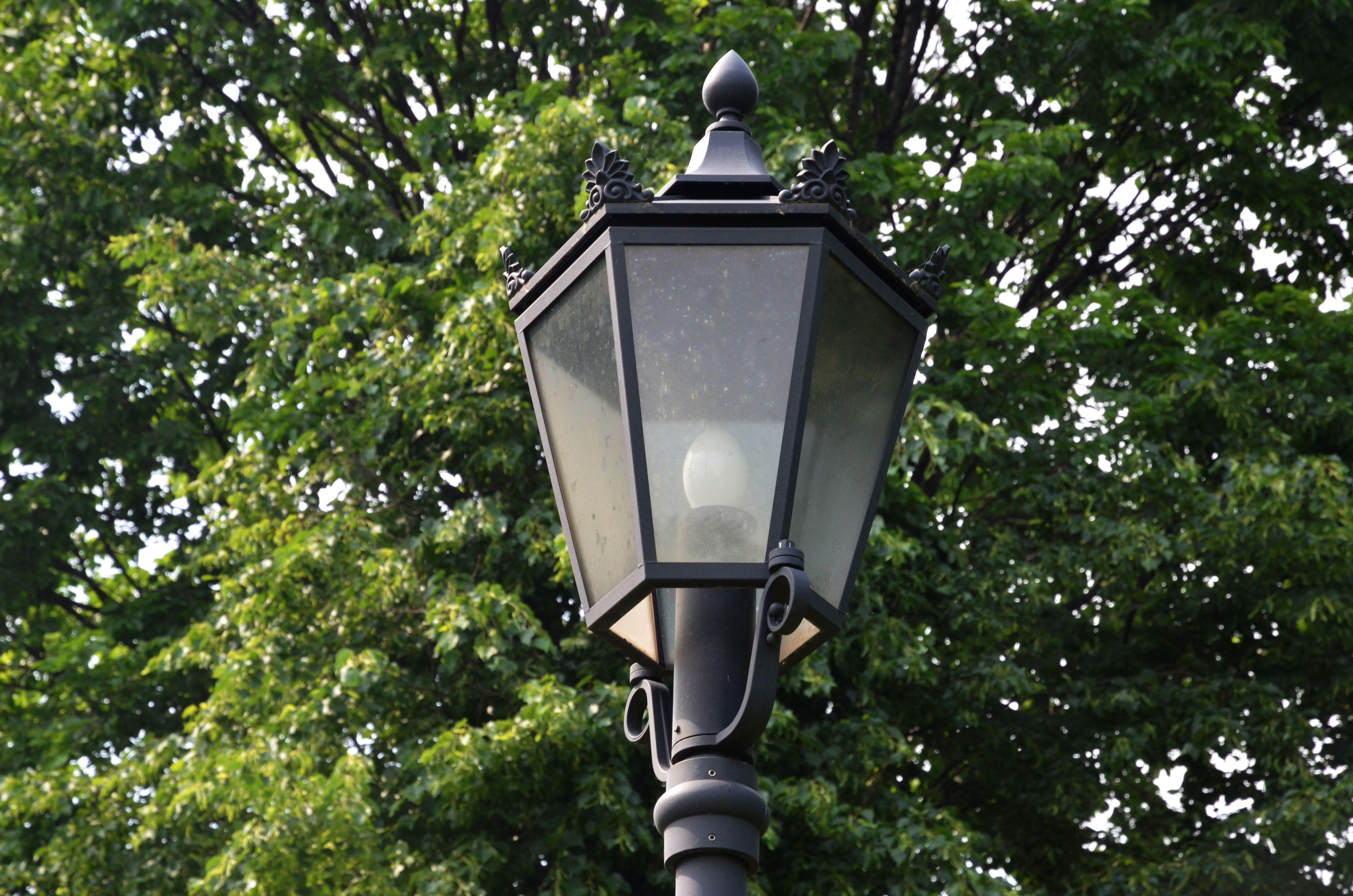 Новые фонари установили в поселении Роговское. Фото: Анна Быкова