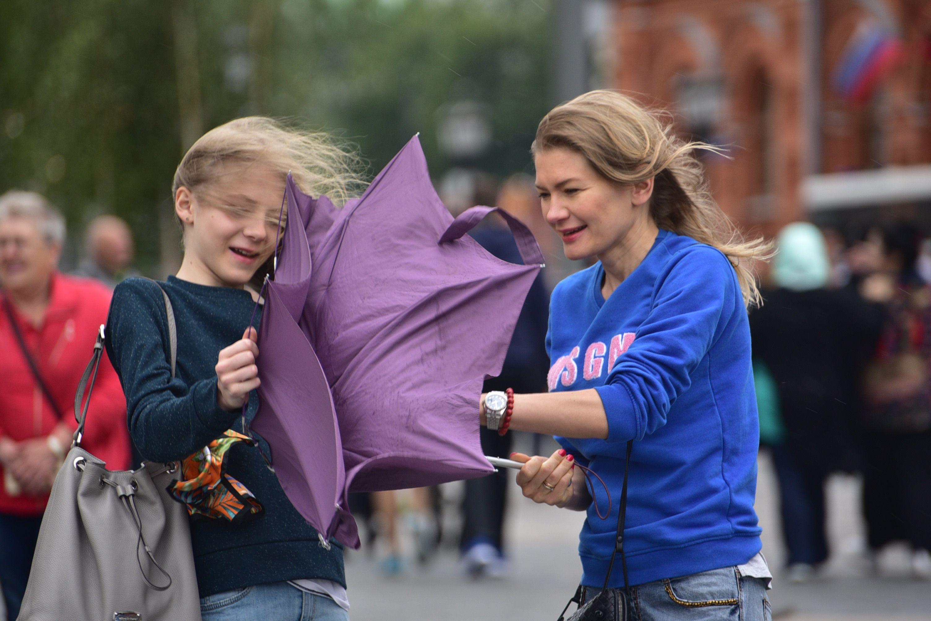 Москвичей в четверг ждет порывистый ветер