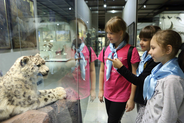 Программа летнего отдыха детей «Московская смена» стартовала в столице