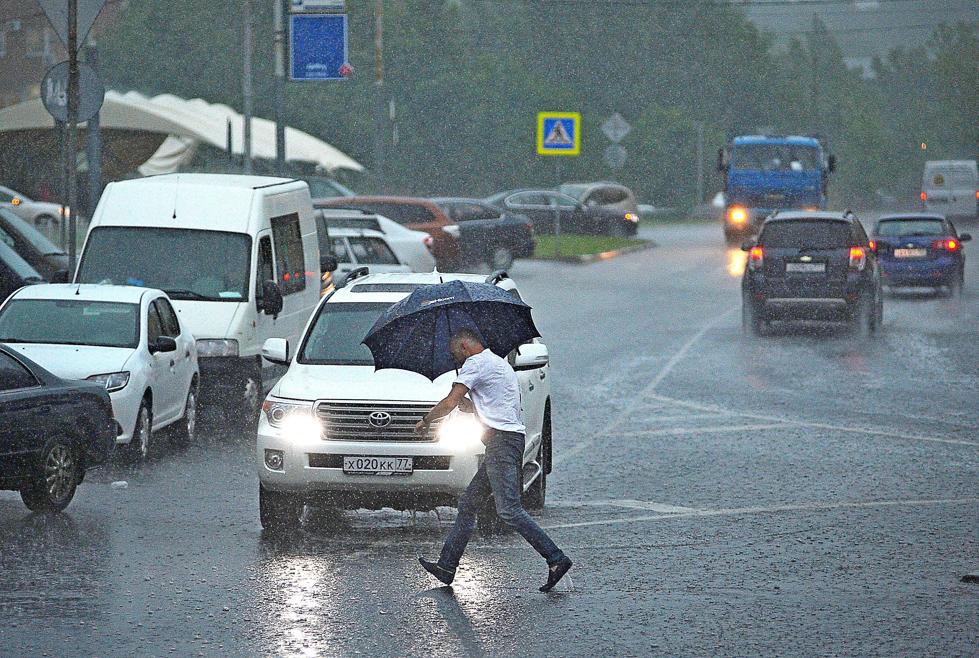 Москвичей предупредили о грозе с ливнями в понедельник