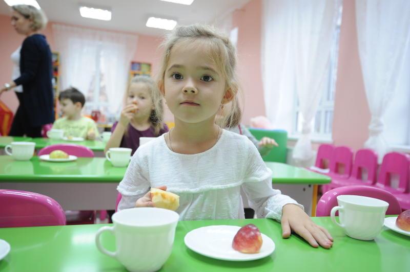 Детский сад построят в частном секторе. Фото: Пелагия Замятина, «Вечерняя Москва»
