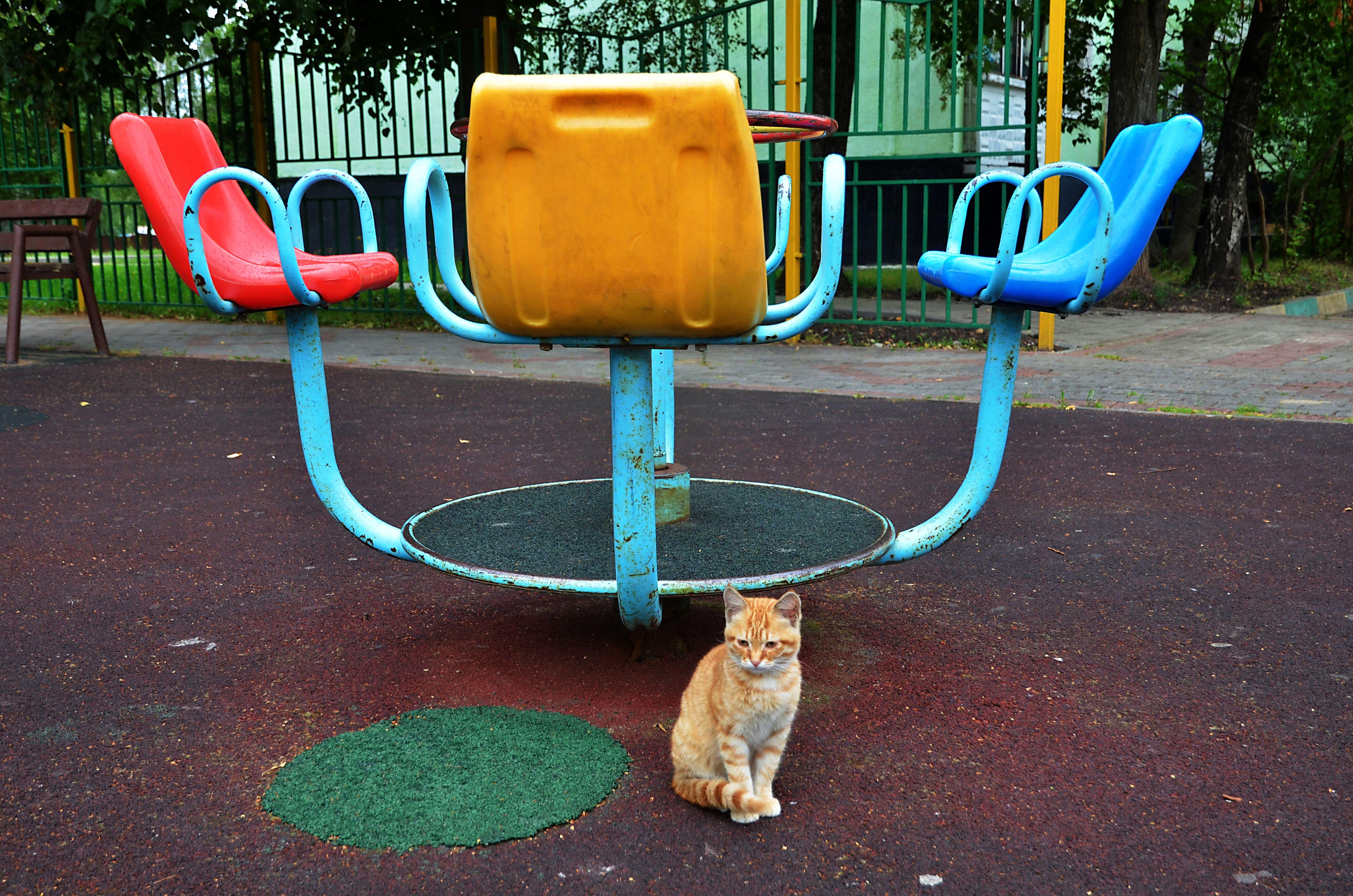 Детские площадки обустроят в поселении Кленовское