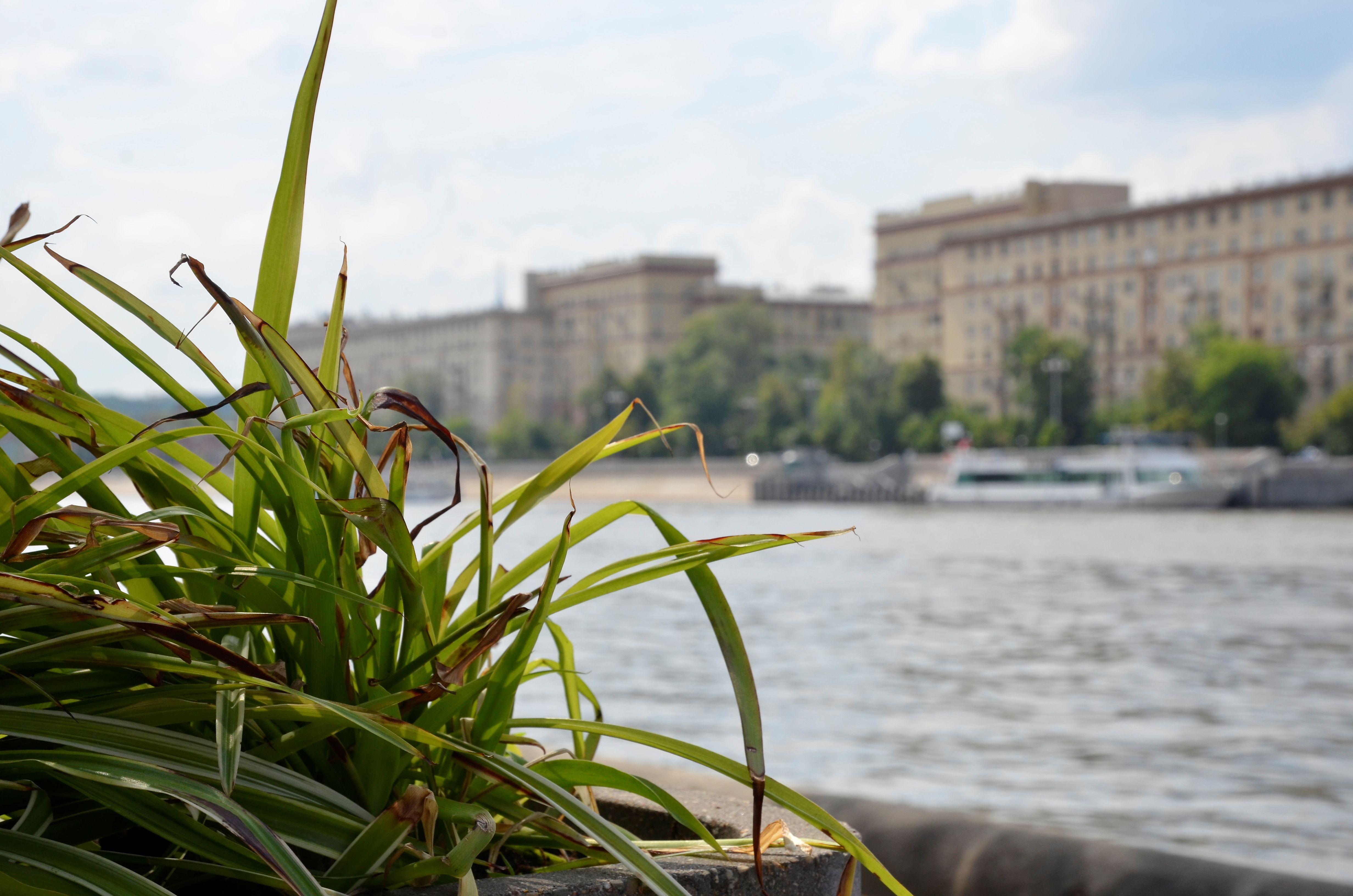 Ветераны из Краснопахорского отправятся на прогулку по Москве-реке
