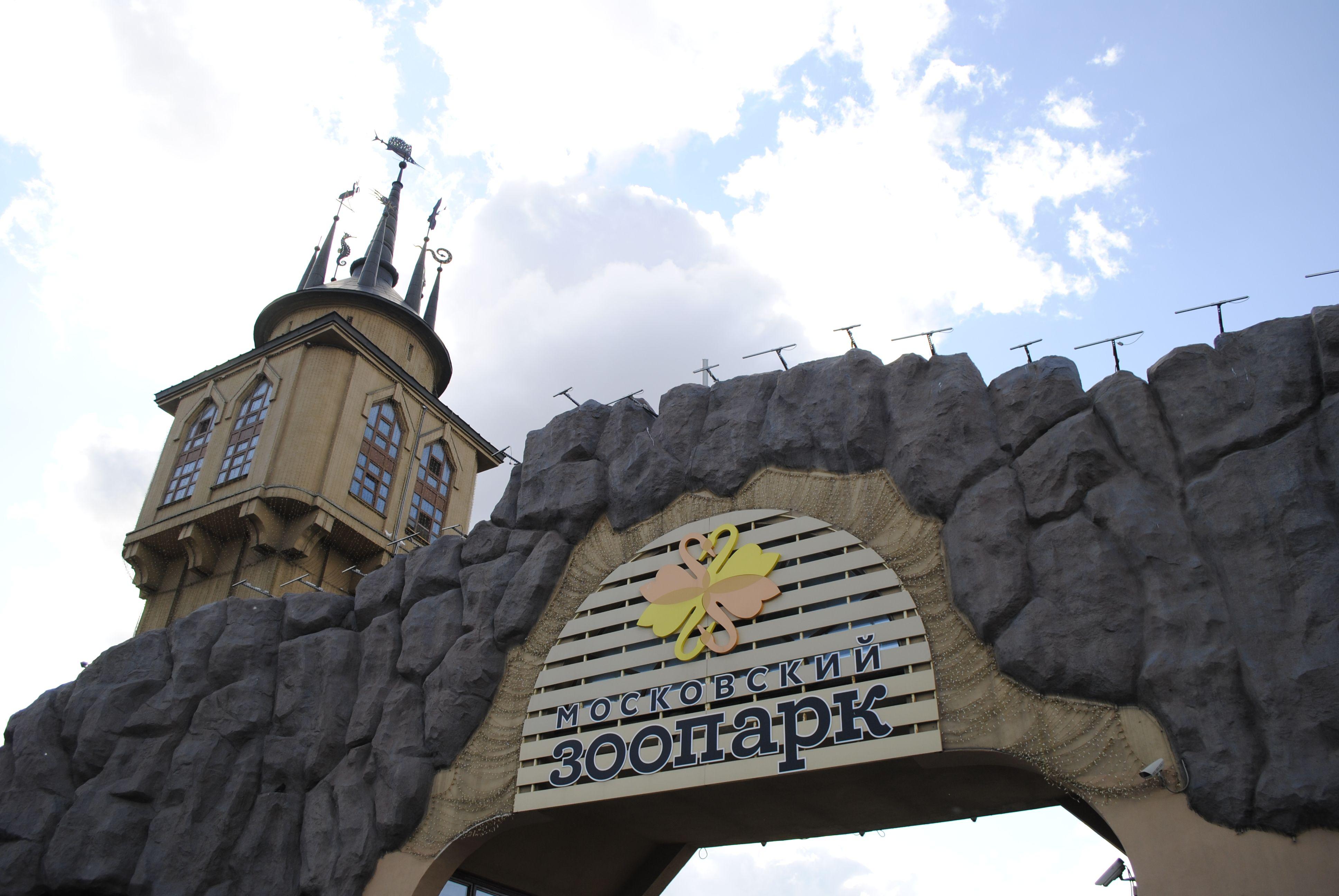Детскую зону откроют в Московском зоопарке