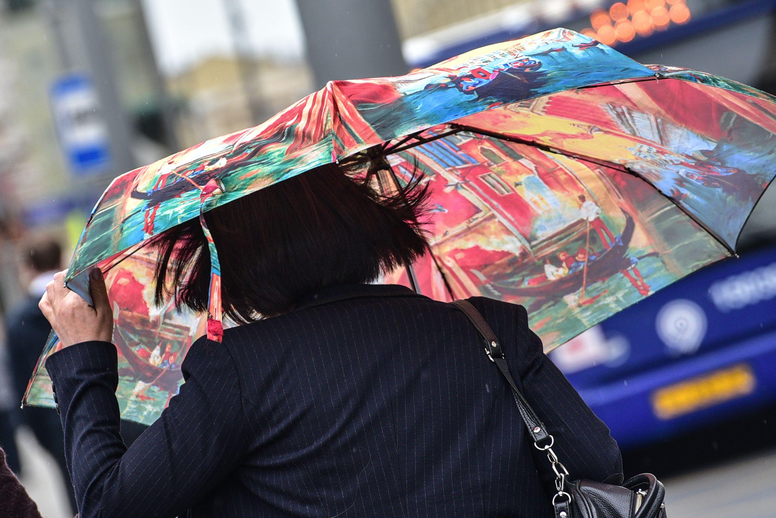 Дожди и сильный ветер ожидаются в Москве