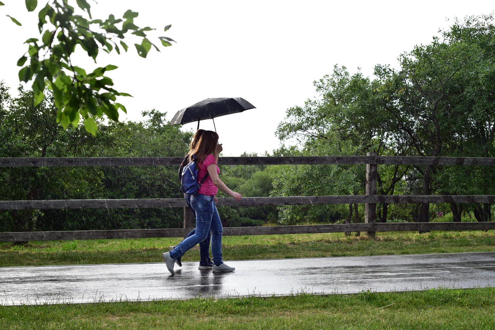 Погода в пятницу будет дождливой и облачной