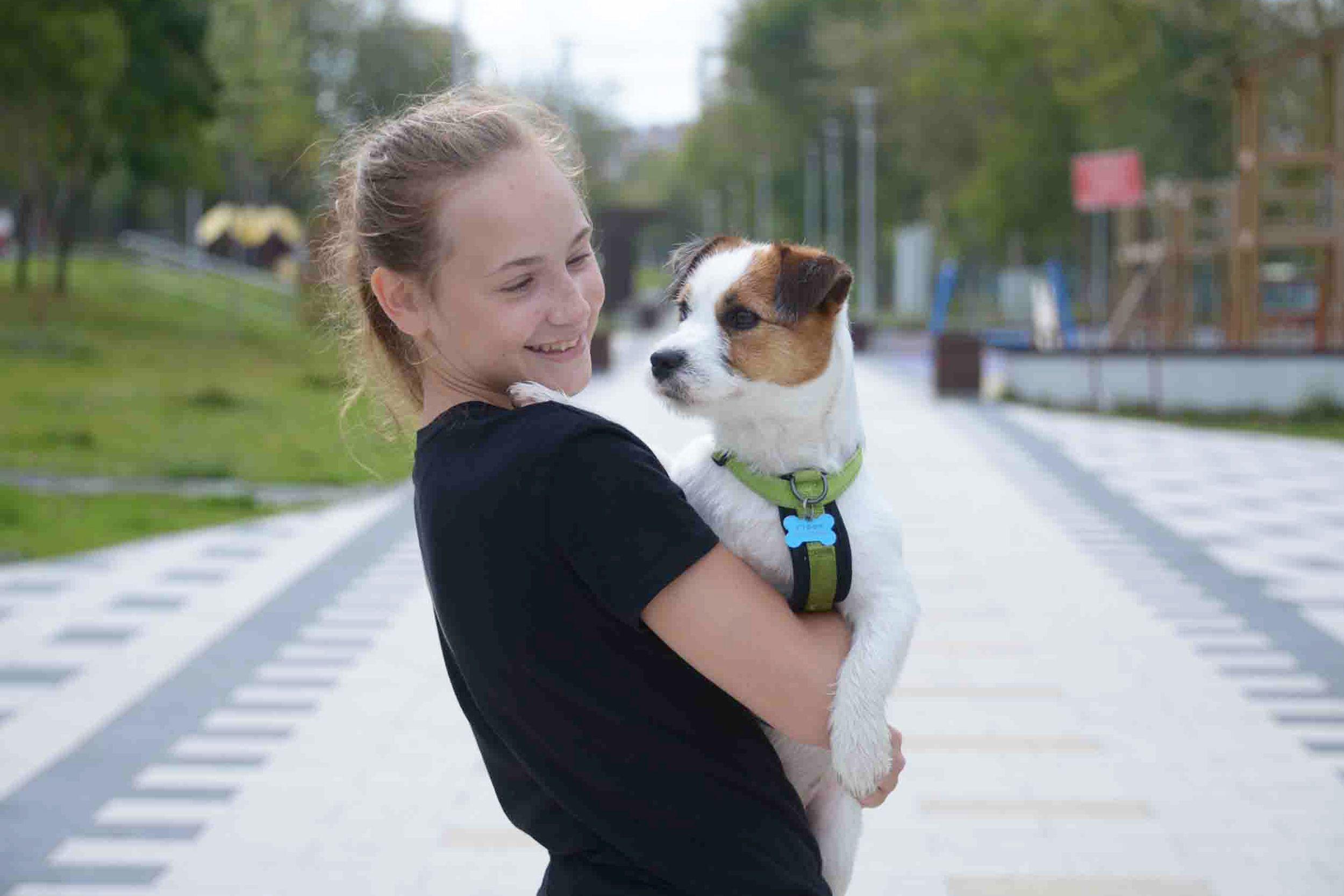 Жители поселения Кокошкино смогут выгулять собак на новой площадке