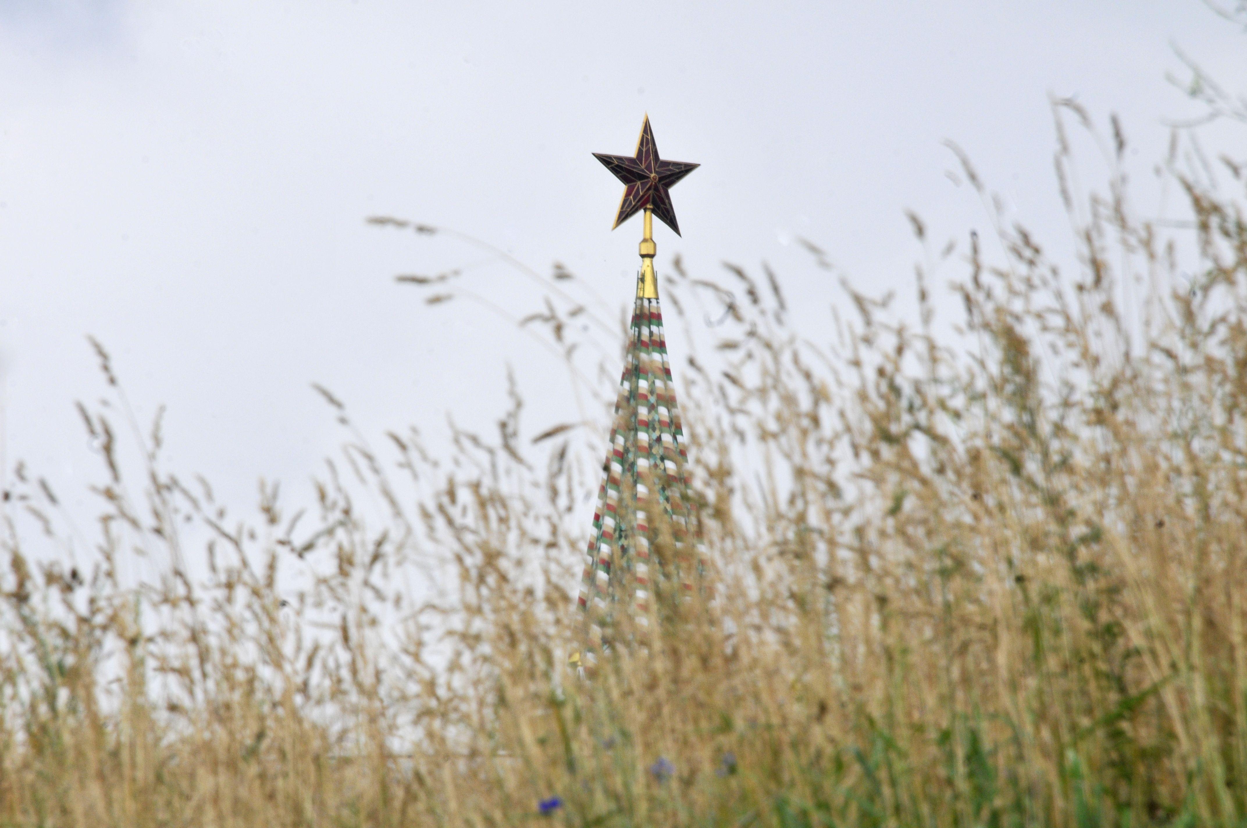 Москвичи помогут выбрать лучшие фотографии мегаполиса
