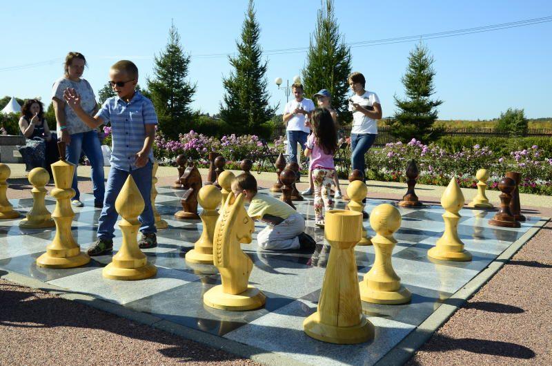 Мероприятия в Парке Горького и на ВДНХ собрали 270 человек. Фото: Анна Быкова