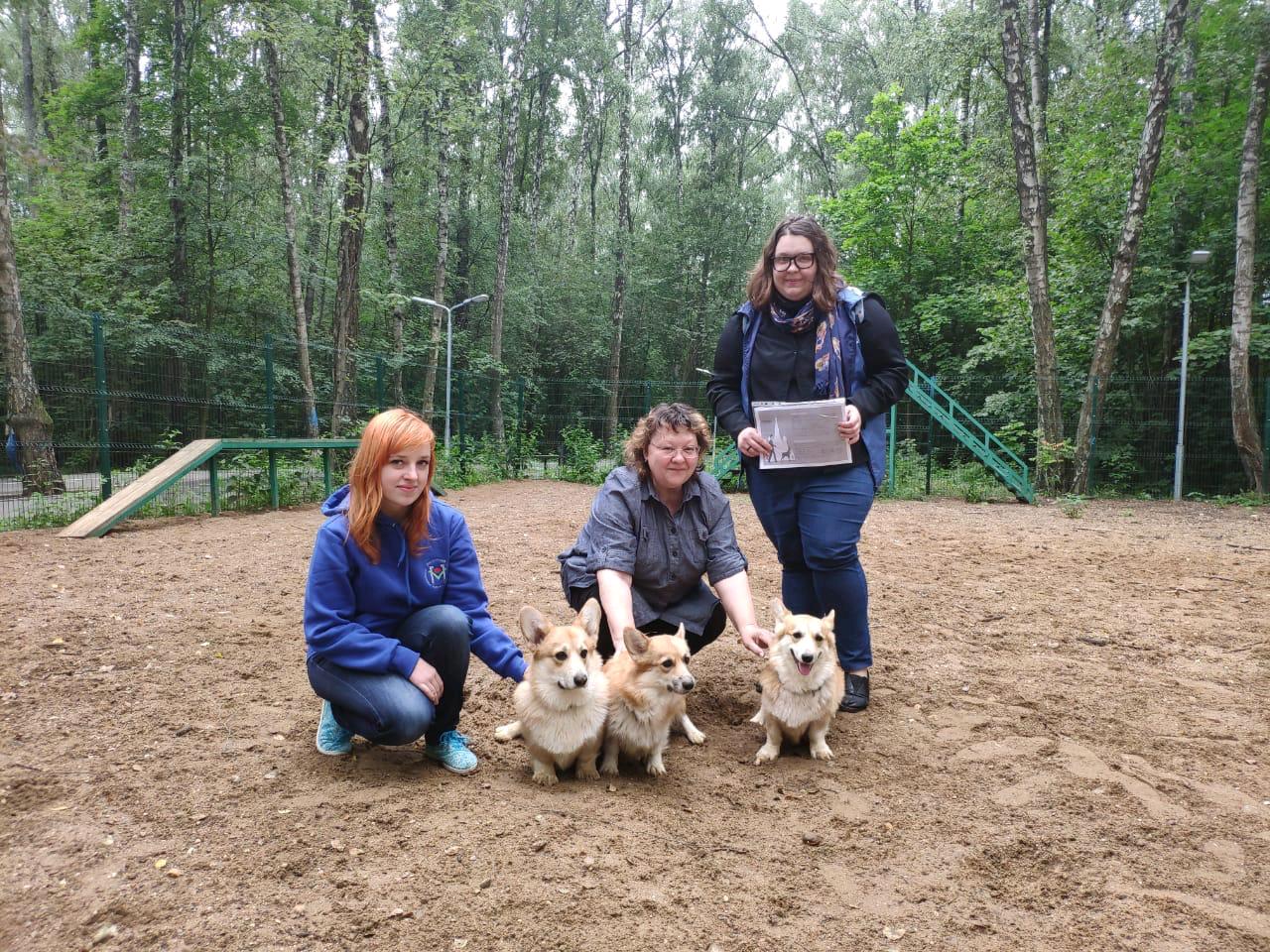 Жителям Московского рассказали о правильном выгуле собак