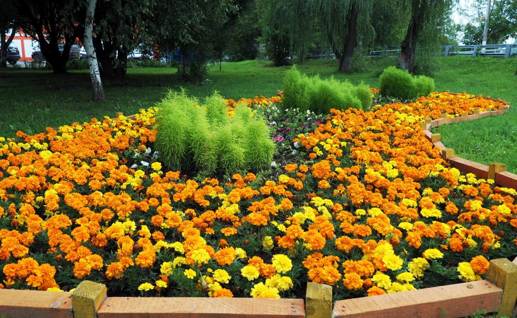 Работы по уходу за цветами завершились в Рязановском