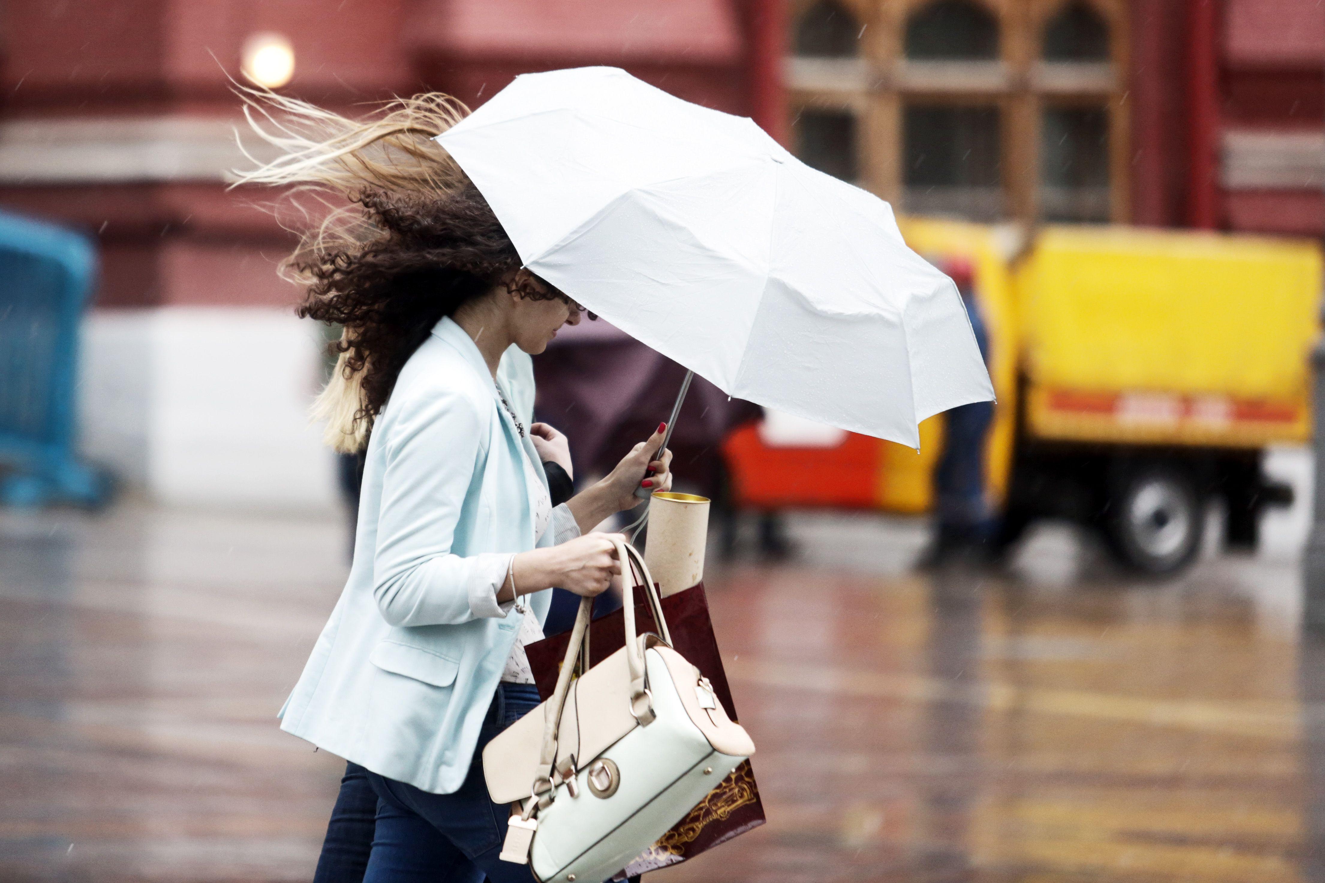 Дожди и порывистый ветер придут в Москву во вторник