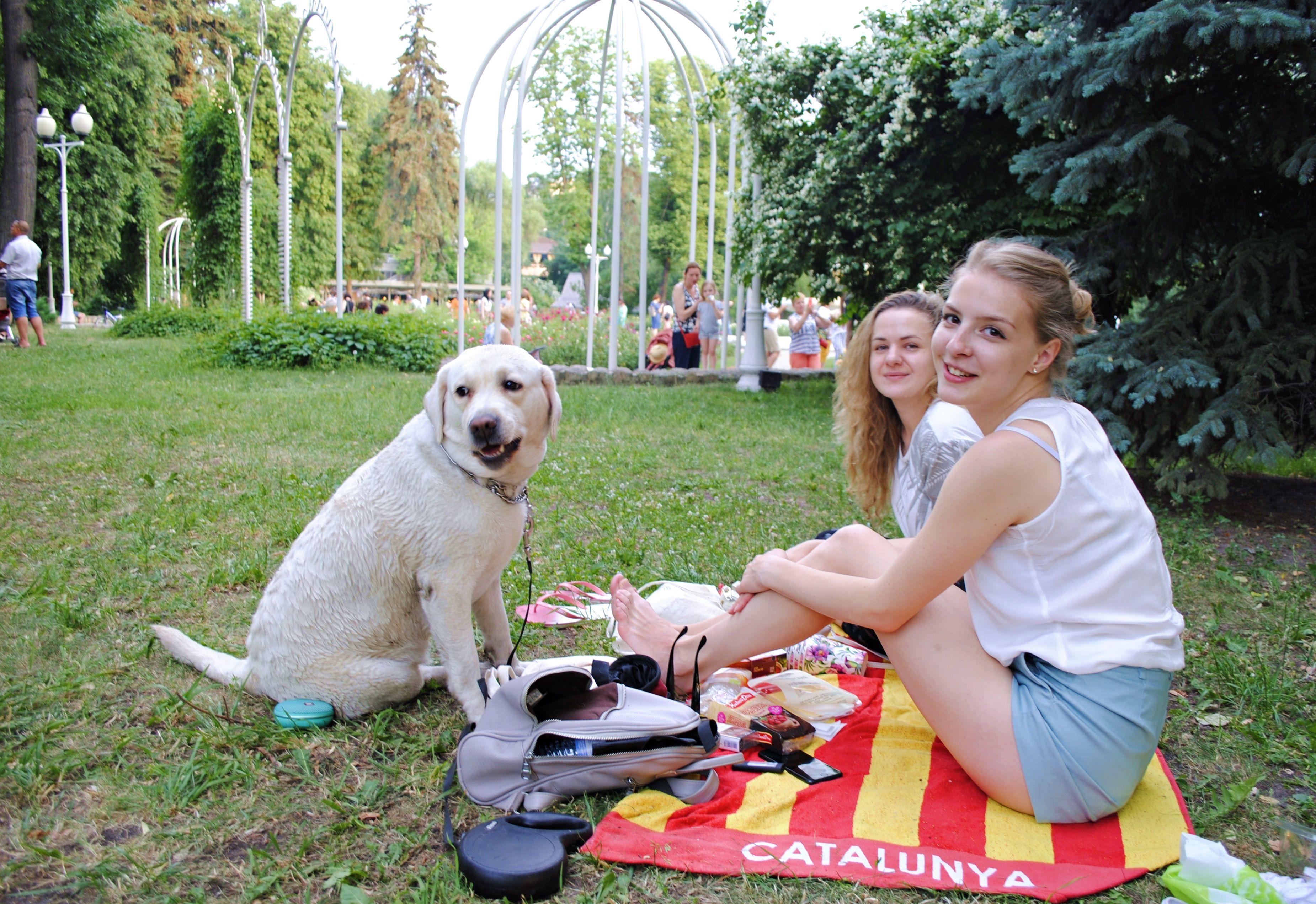 Четверг подарит москвичам летнее тепло