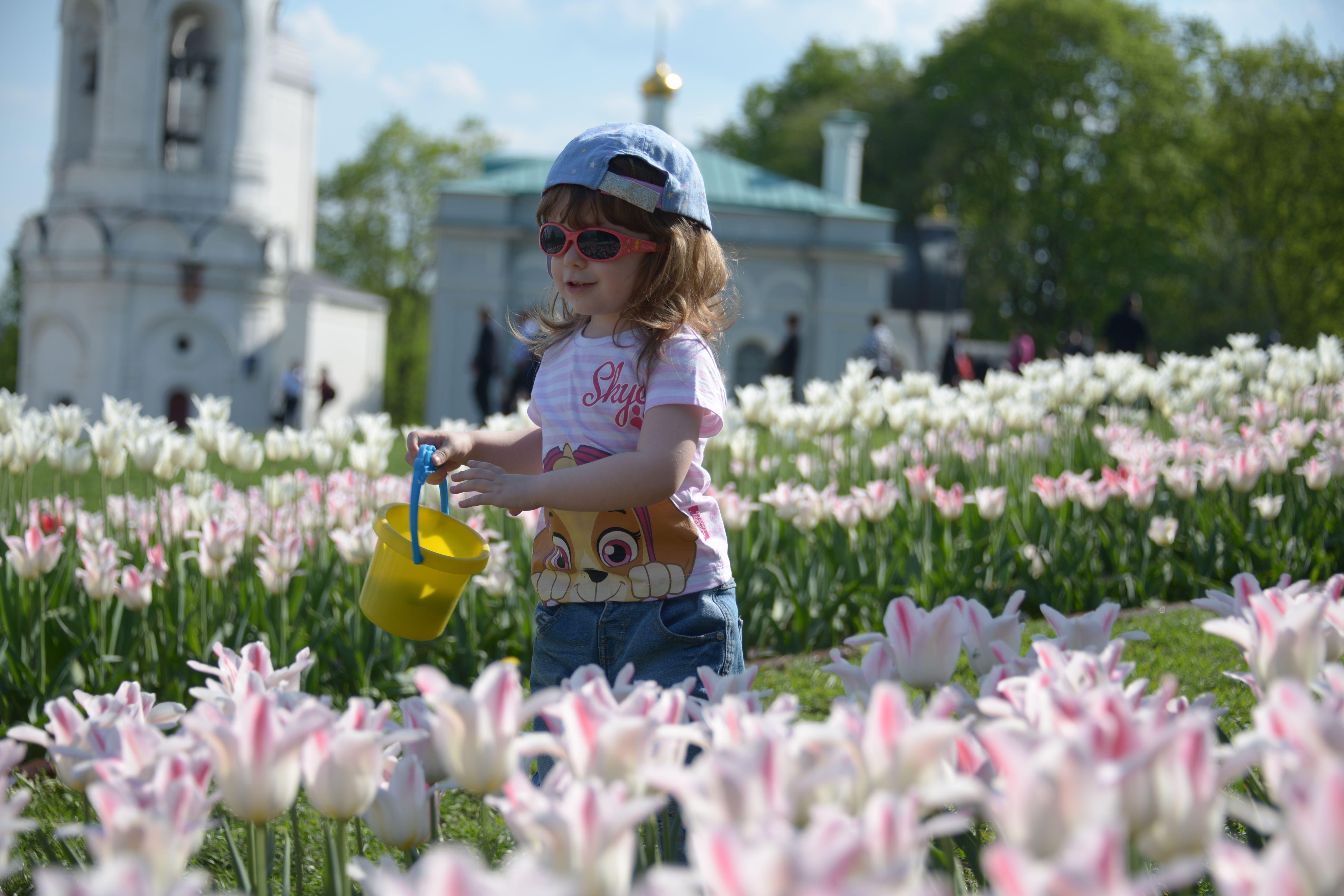 Работы пройдут во Внуковском. Фото: Наталья Феоктистова