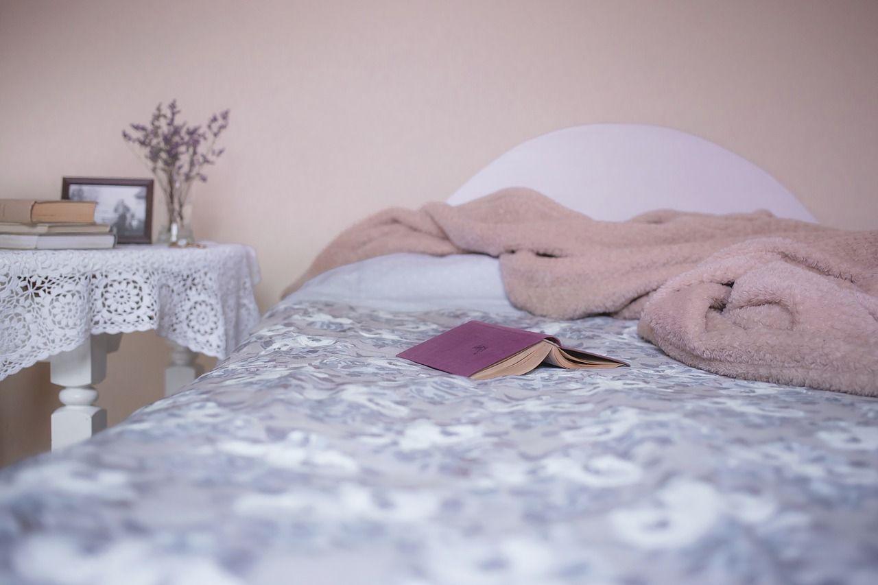 Москвичей призвали чаще менять постельное белье из-за клопов