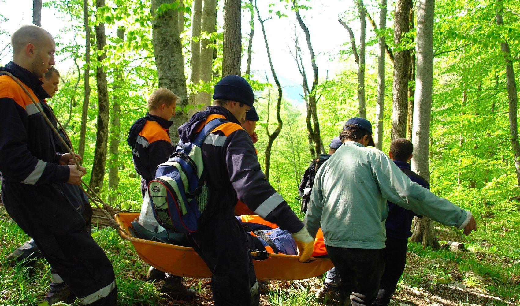 Московские спасатели проводят поиски заблудившихся в лесу людей